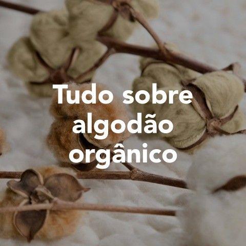 Tudo sobre algodão orgânico